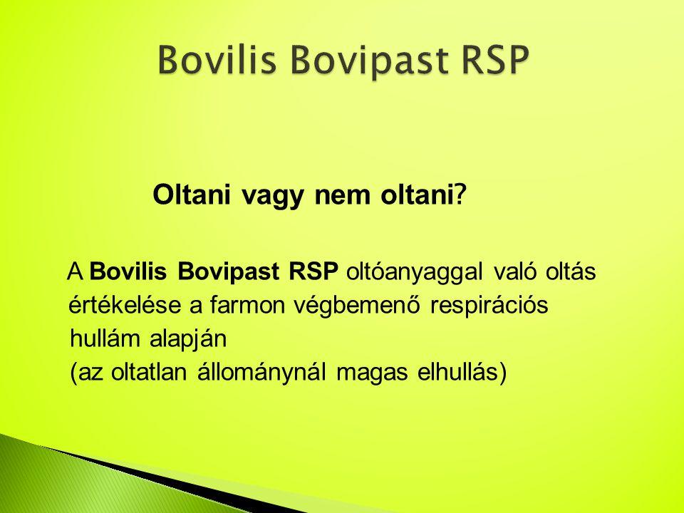 Bovilis Bovipast RSP Oltani vagy nem oltani