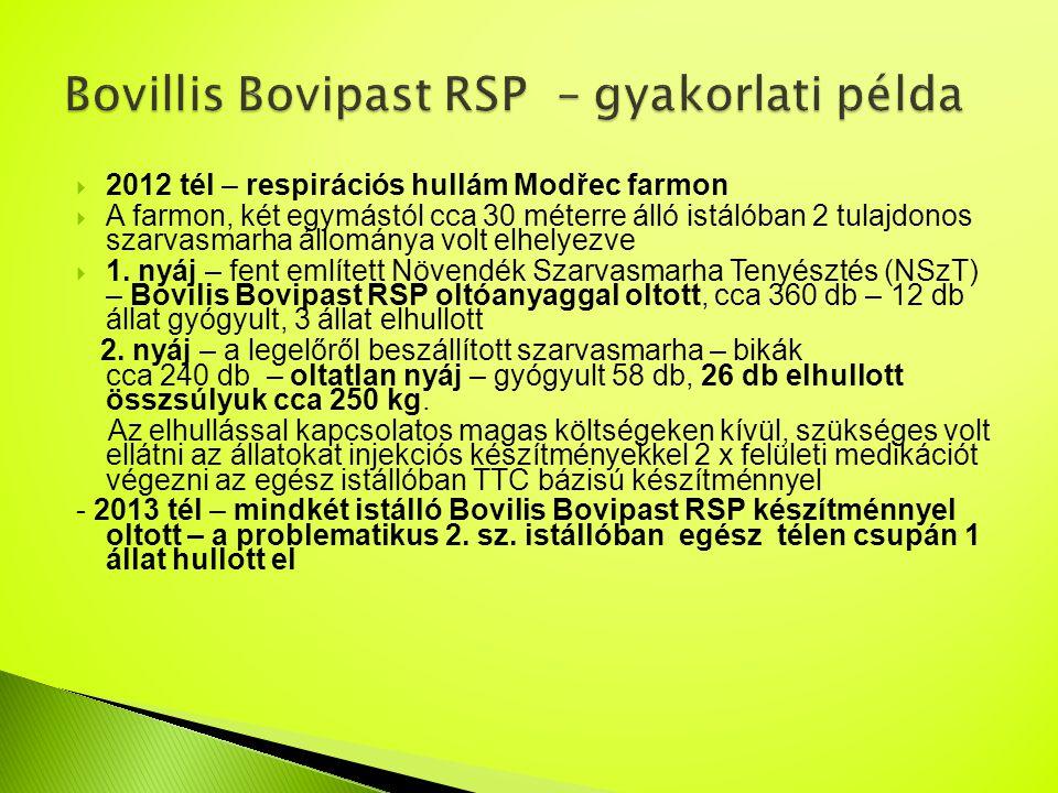 Bovillis Bovipast RSP – gyakorlati példa