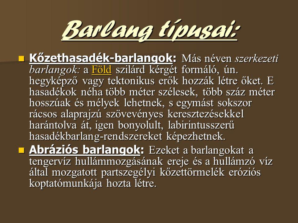 Barlang típusai: