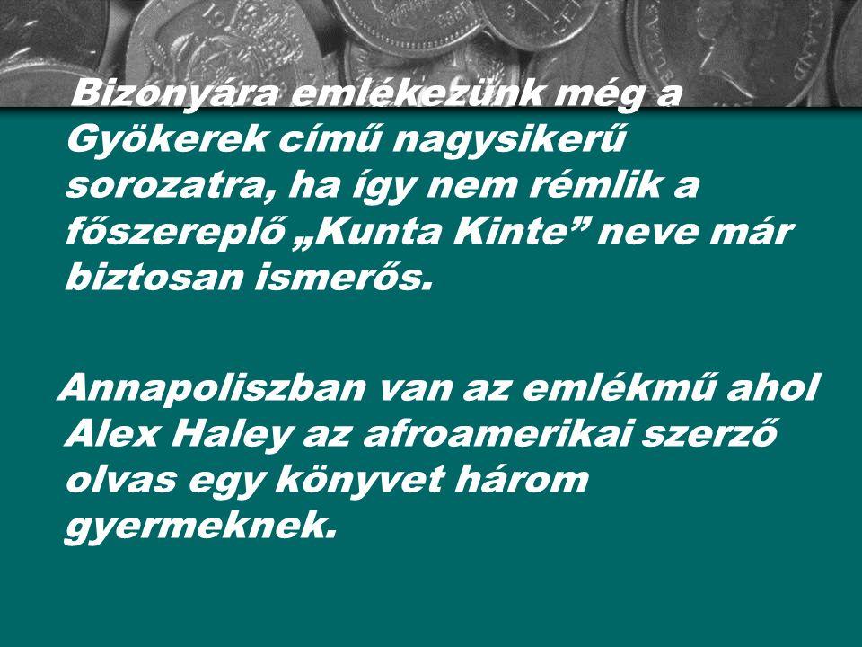 """Bizonyára emlékezünk még a Gyökerek című nagysikerű sorozatra, ha így nem rémlik a főszereplő """"Kunta Kinte neve már biztosan ismerős."""