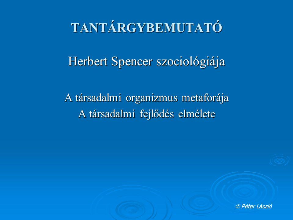Herbert Spencer szociológiája