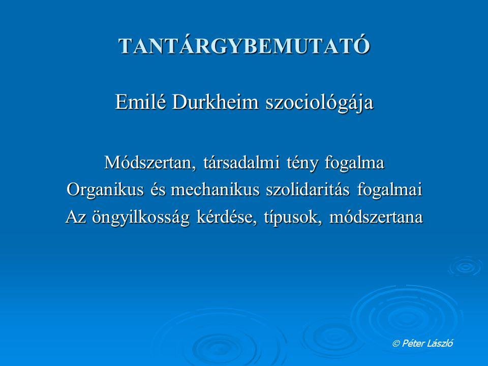 Emilé Durkheim szociológája