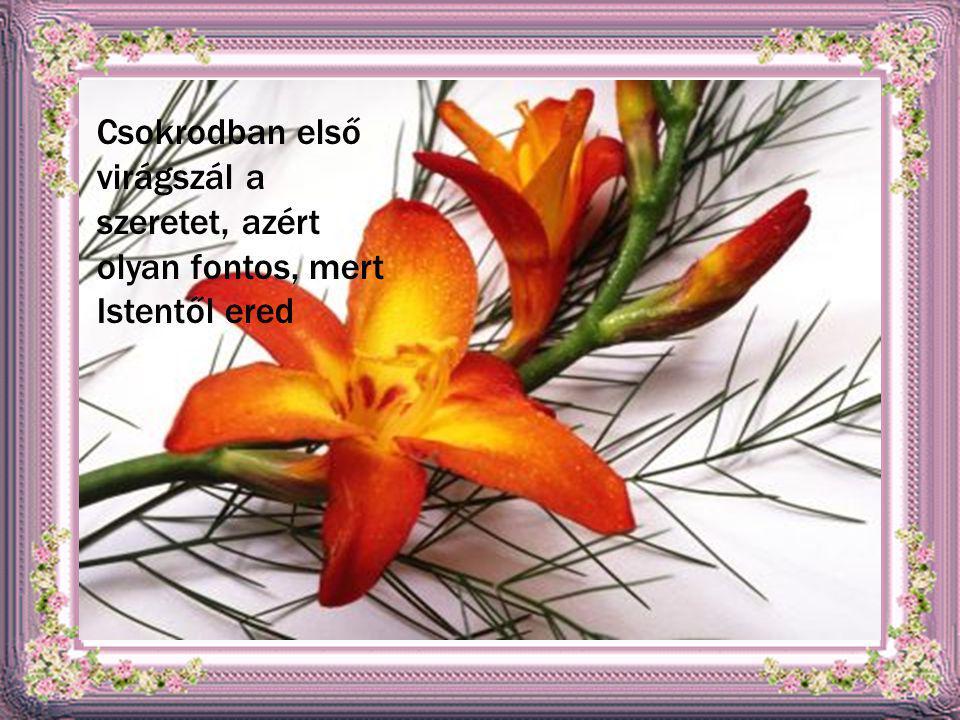 Csokrodban első virágszál a szeretet, azért olyan fontos, mert Istentől ered