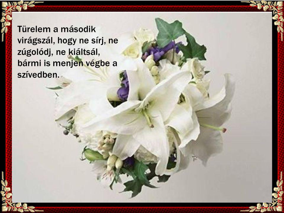 Türelem a második virágszál, hogy ne sírj, ne zúgolódj, ne kiáltsál, bármi is menjen végbe a szívedben.