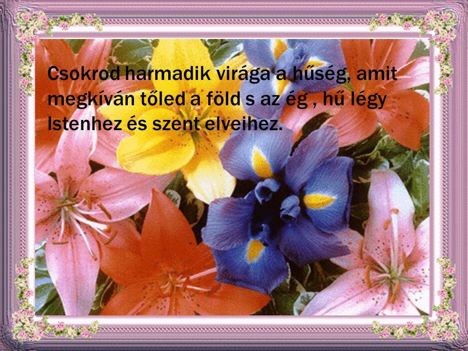 Csokrod harmadik virága a hűség, amit megkíván tőled a föld s az ég , hű légy Istenhez és szent elveihez.