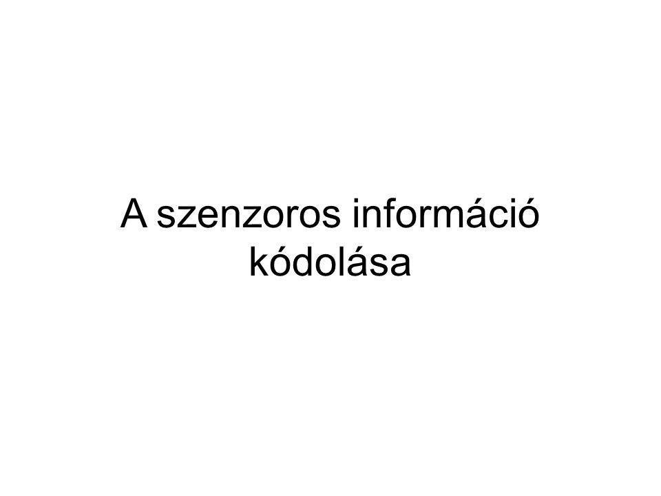 A szenzoros információ kódolása