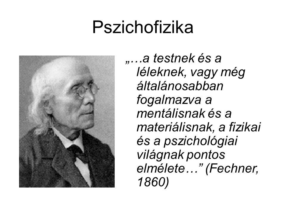 Pszichofizika