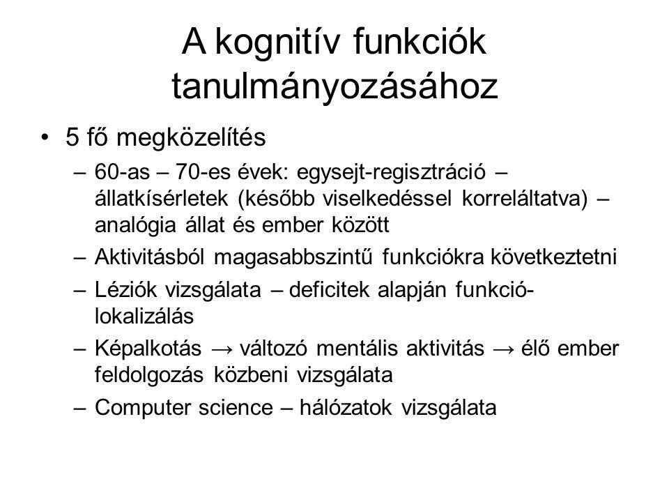 A kognitív funkciók tanulmányozásához
