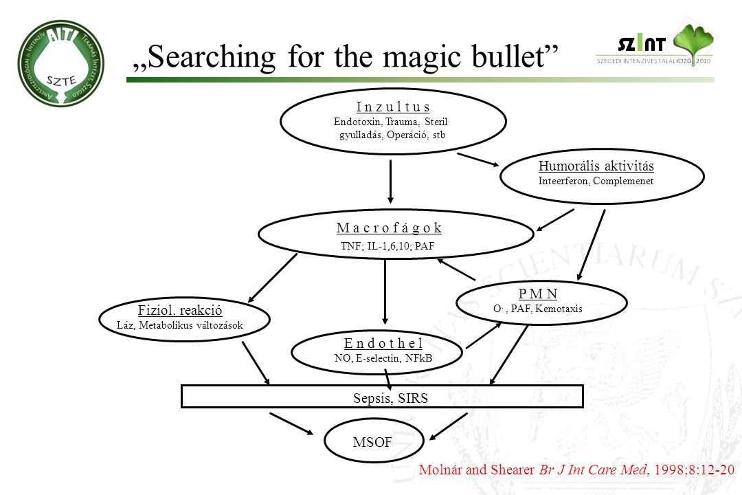 """Searching for the magic bullet"