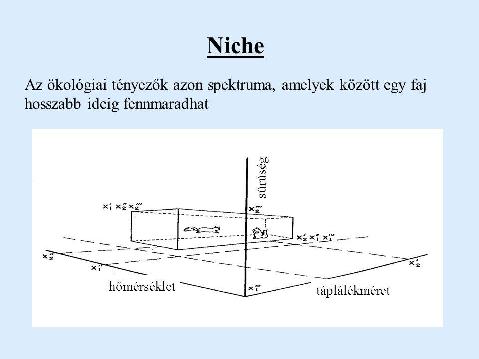 Niche Az ökológiai tényezők azon spektruma, amelyek között egy faj hosszabb ideig fennmaradhat. sűrűség.
