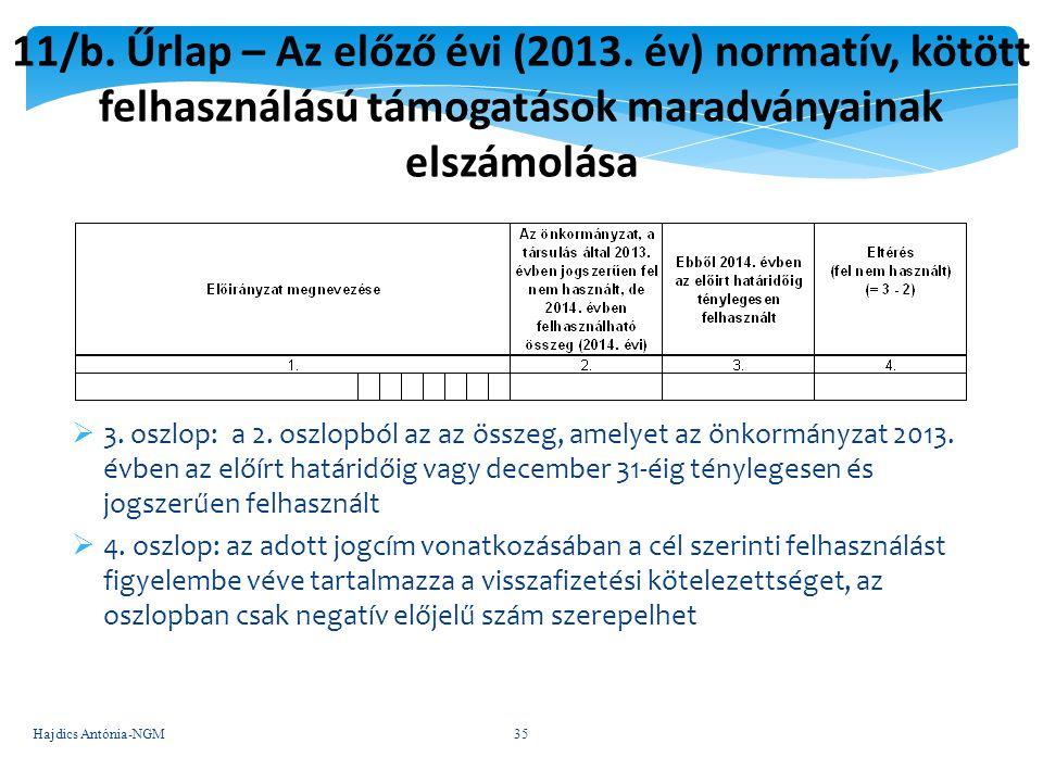 11/b. Űrlap – Az előző évi (2013. év) normatív, kötött felhasználású támogatások maradványainak elszámolása