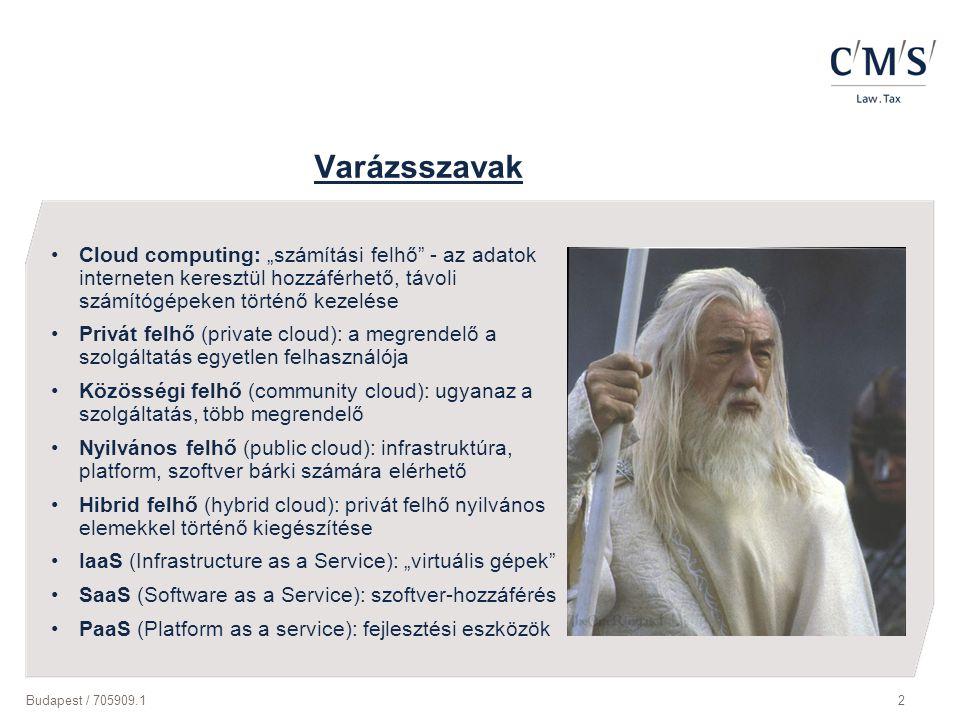 """Varázsszavak Cloud computing: """"számítási felhő - az adatok interneten keresztül hozzáférhető, távoli számítógépeken történő kezelése."""
