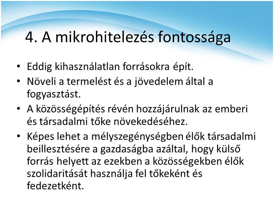 4. A mikrohitelezés fontossága