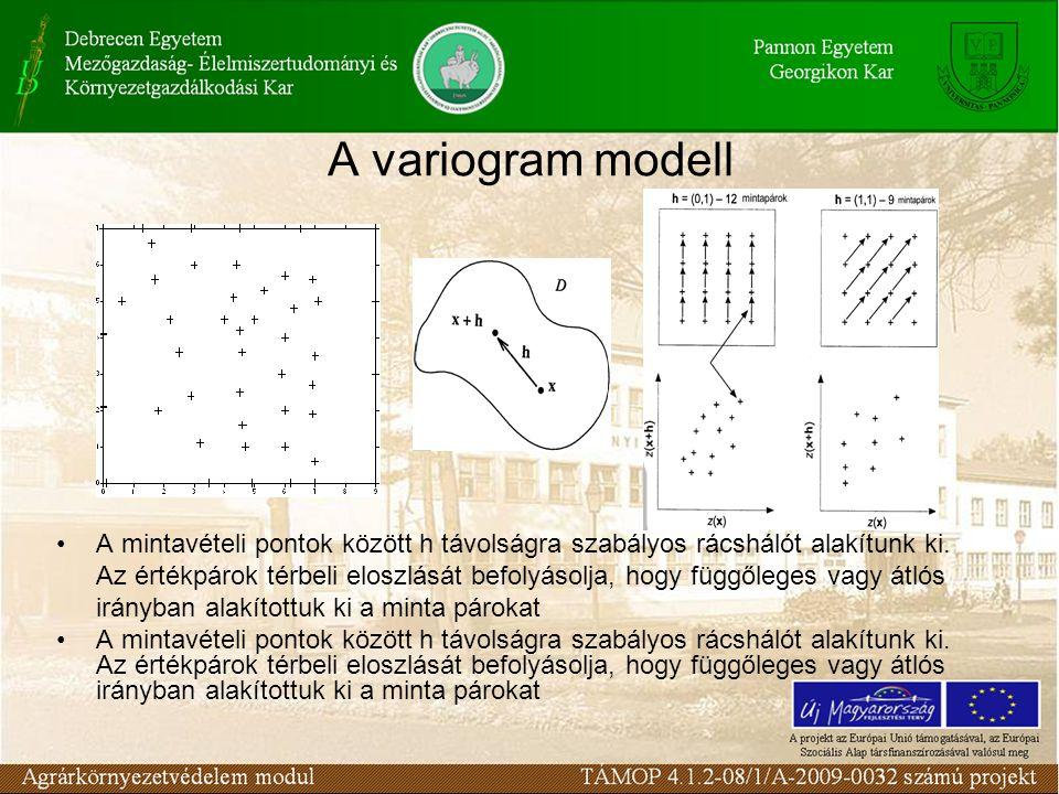 A variogram modell