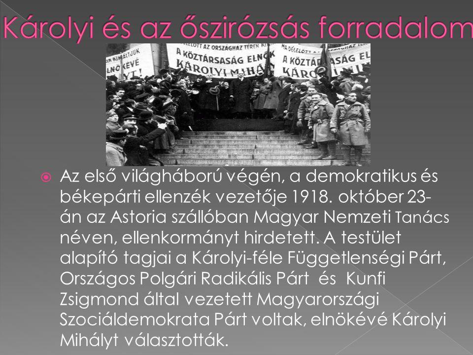 Károlyi és az őszirózsás forradalom