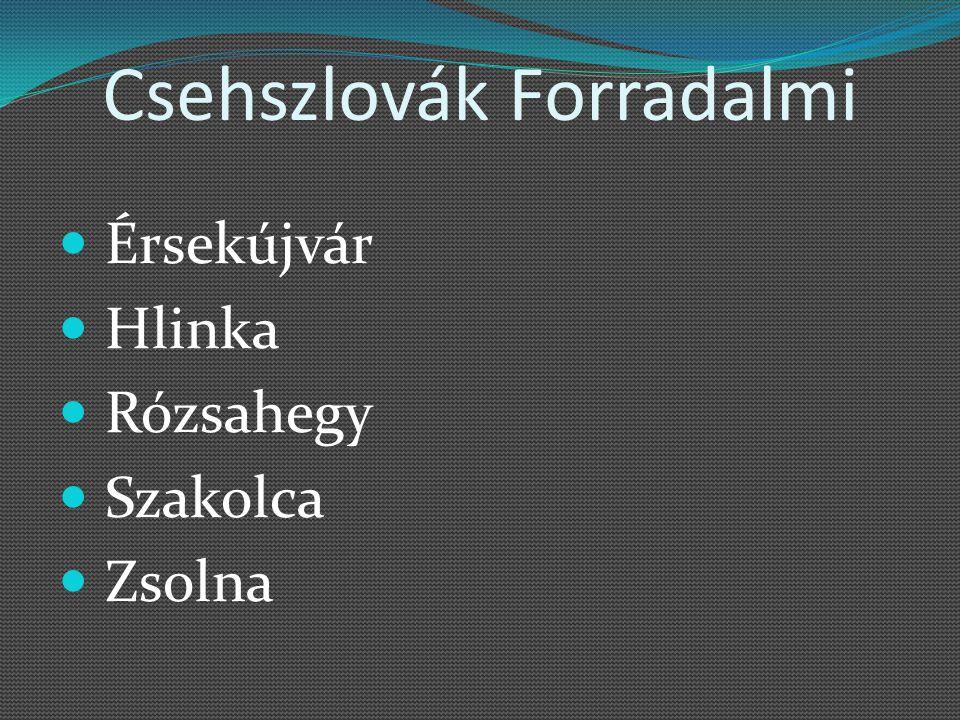 Csehszlovák Forradalmi