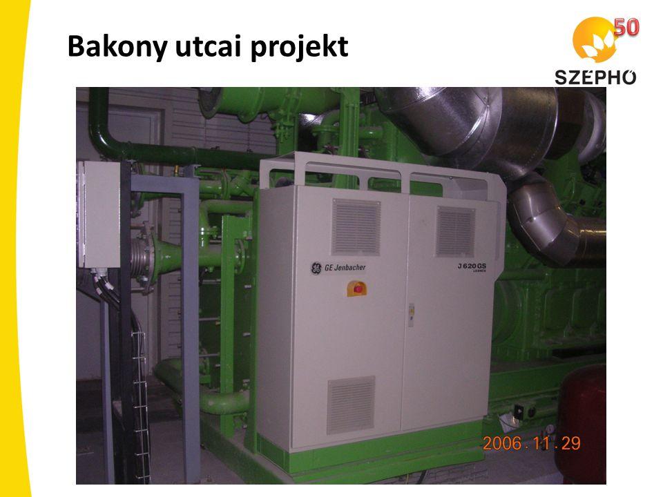 50 Bakony utcai projekt