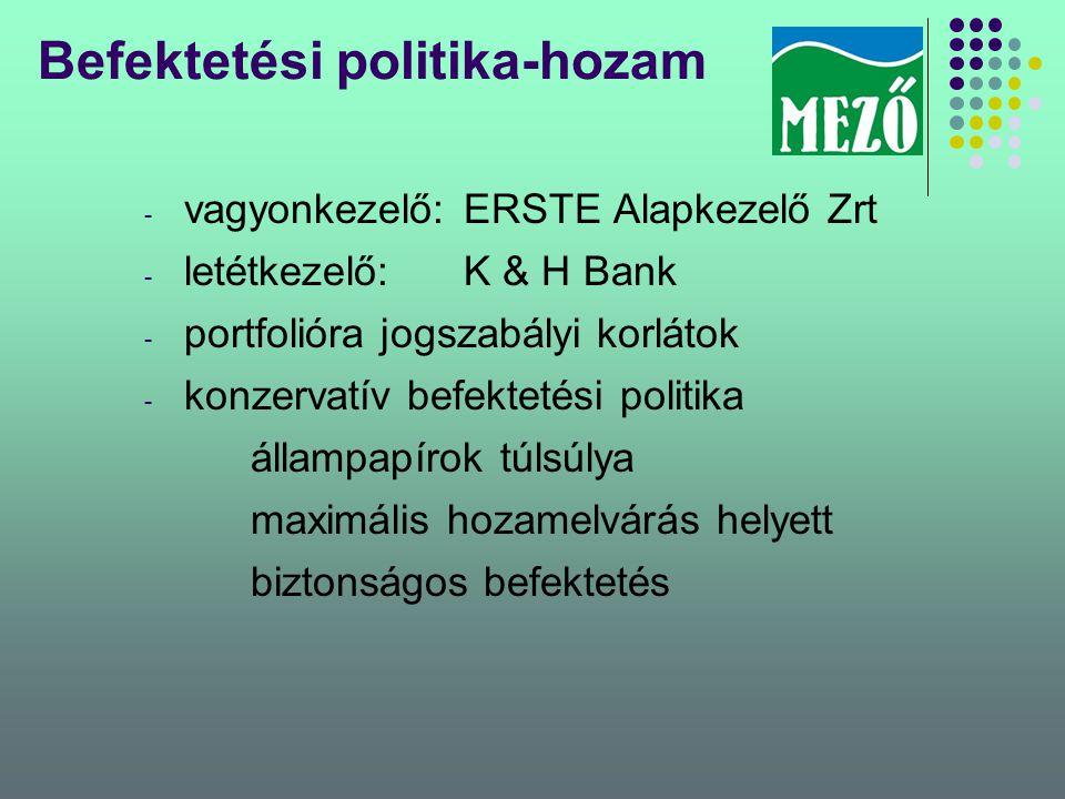Befektetési politika-hozam