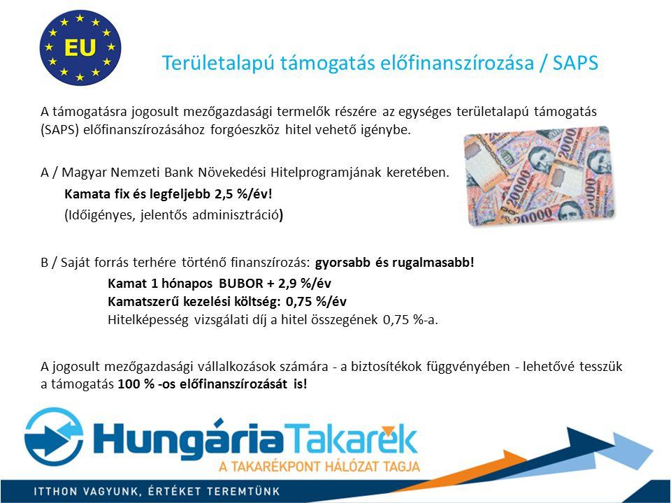 Területalapú támogatás előfinanszírozása / SAPS