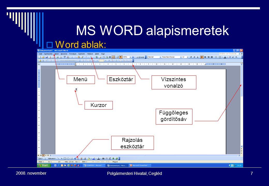 MS WORD alapismeretek Word ablak: Menü Eszköztár Vízszintes vonalzó
