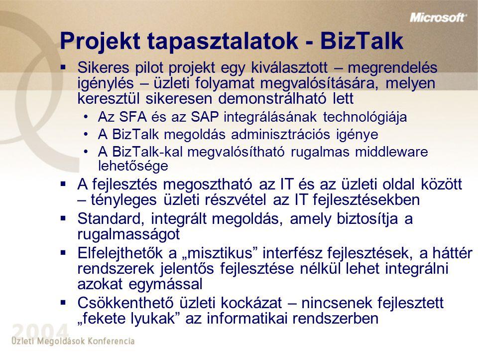 Projekt tapasztalatok - BizTalk