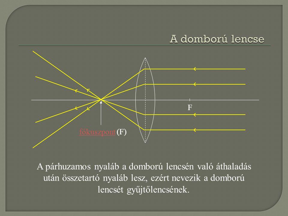 A domború lencse F. fókuszpont (F)