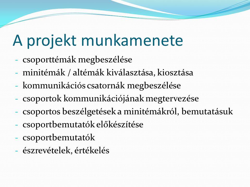 A projekt munkamenete csoporttémák megbeszélése