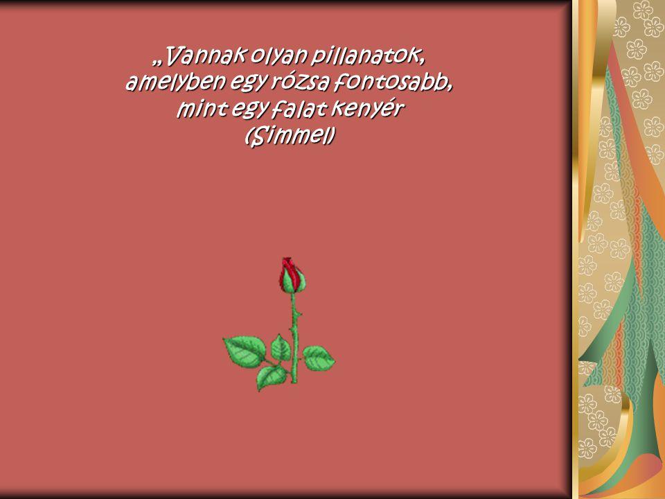 """""""Vannak olyan pillanatok, amelyben egy rózsa fontosabb, mint egy falat kenyér (Simmel)"""