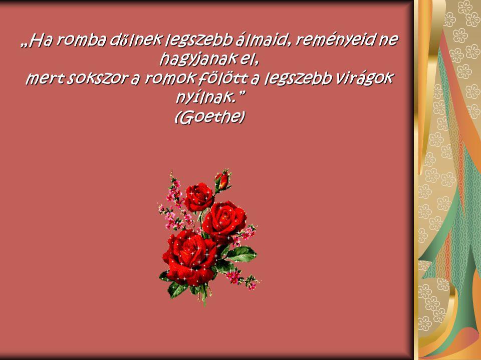 """""""Ha romba dőlnek legszebb álmaid, reményeid ne hagyjanak el, mert sokszor a romok fölött a legszebb virágok nyílnak. (Goethe)"""