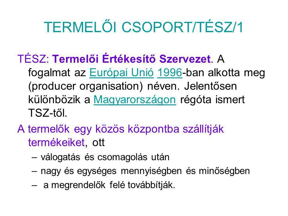 TERMELŐI CSOPORT/TÉSZ/1
