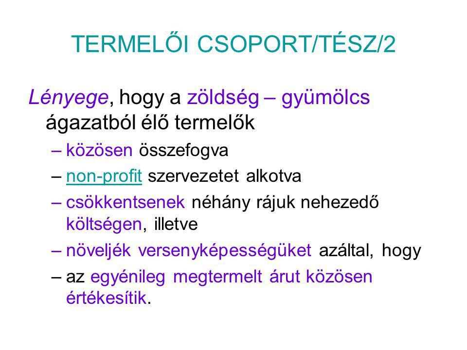TERMELŐI CSOPORT/TÉSZ/2