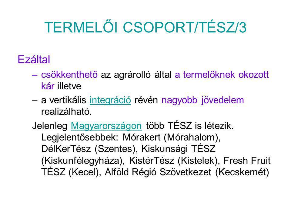 TERMELŐI CSOPORT/TÉSZ/3
