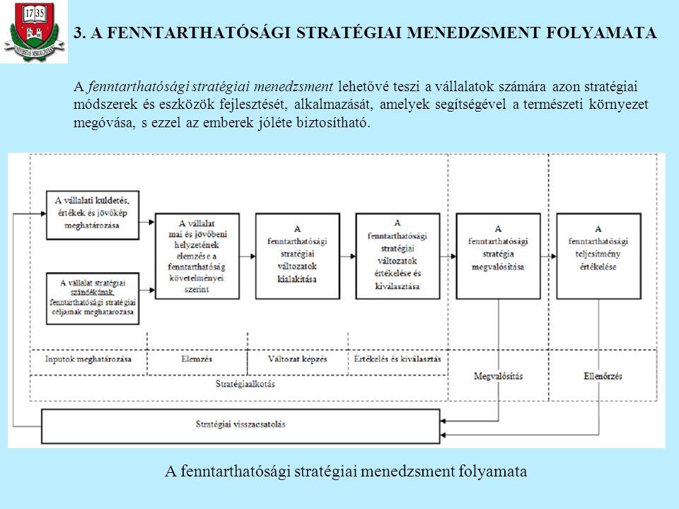 3. A FENNTARTHATÓSÁGI STRATÉGIAI MENEDZSMENT FOLYAMATA