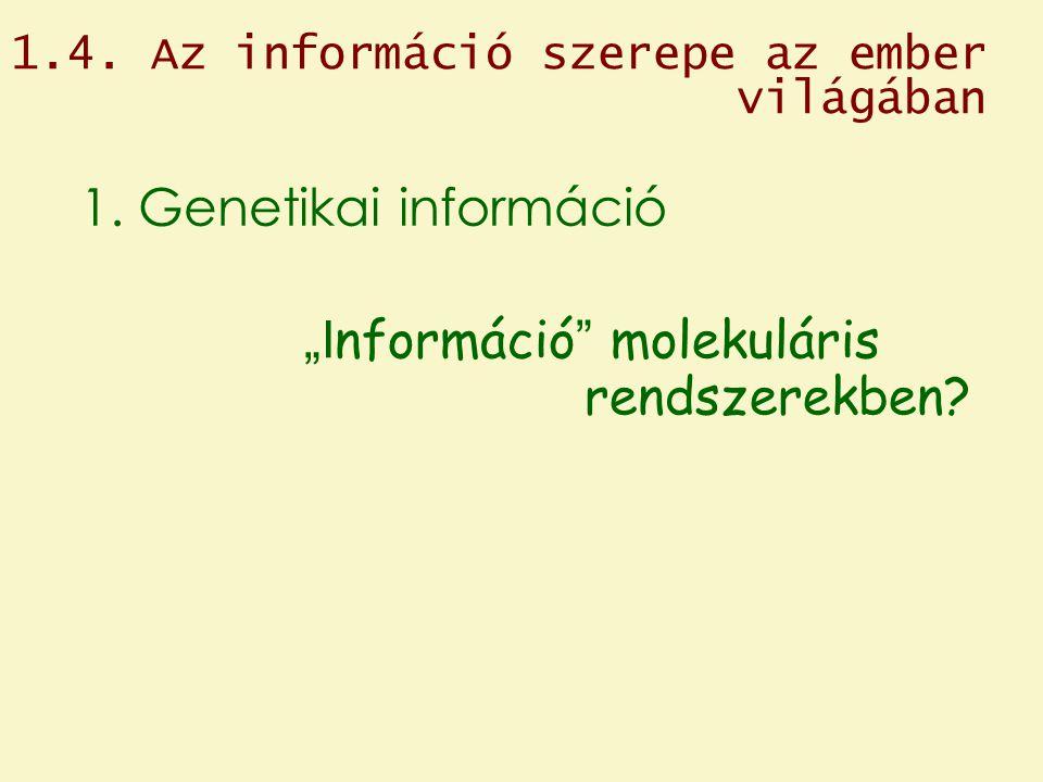 """""""Információ molekuláris rendszerekben"""