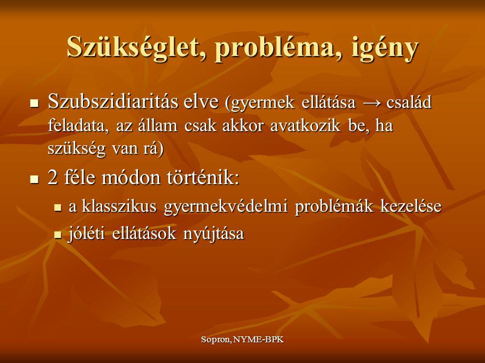 Szükséglet, probléma, igény