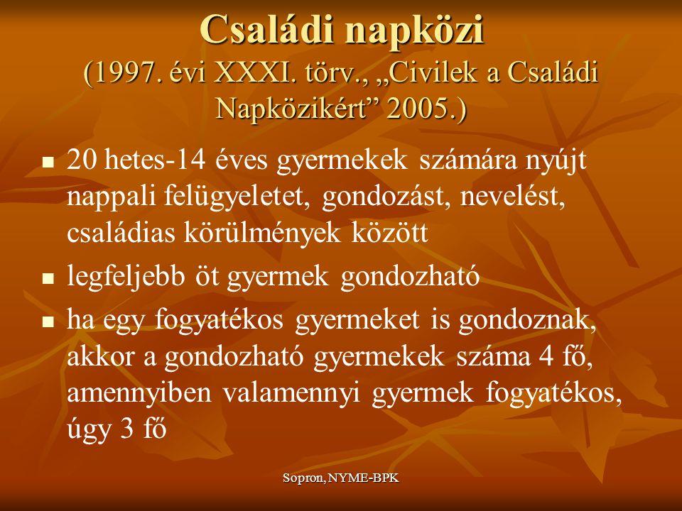 Családi napközi (1997. évi XXXI. törv