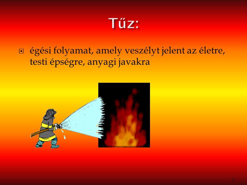 Tűz: égési folyamat, amely veszélyt jelent az életre, testi épségre, anyagi javakra