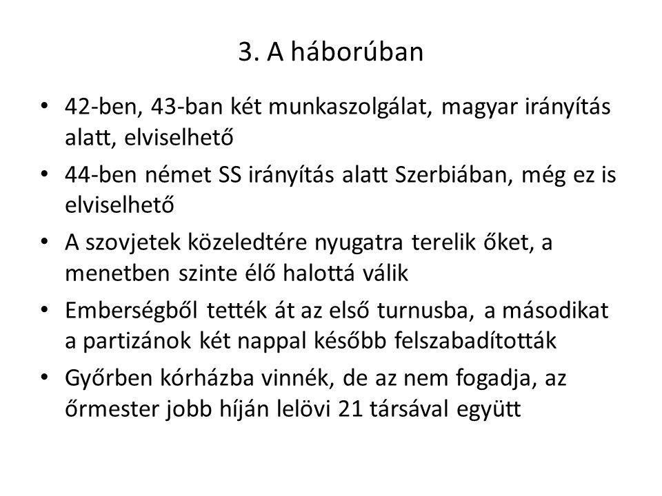 3. A háborúban 42-ben, 43-ban két munkaszolgálat, magyar irányítás alatt, elviselhető.