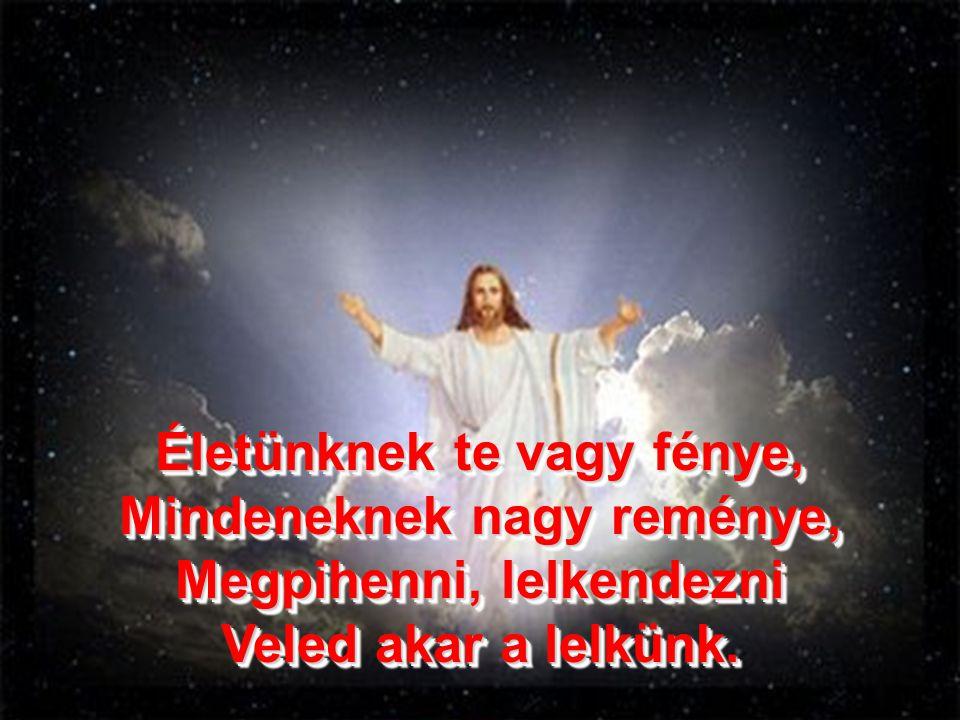 Életünknek te vagy fénye, Mindeneknek nagy reménye, Megpihenni, lelkendezni Veled akar a lelkünk.