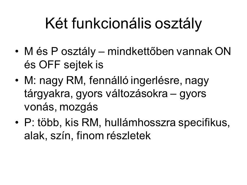 Két funkcionális osztály
