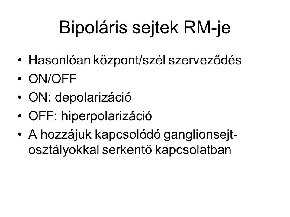 Bipoláris sejtek RM-je