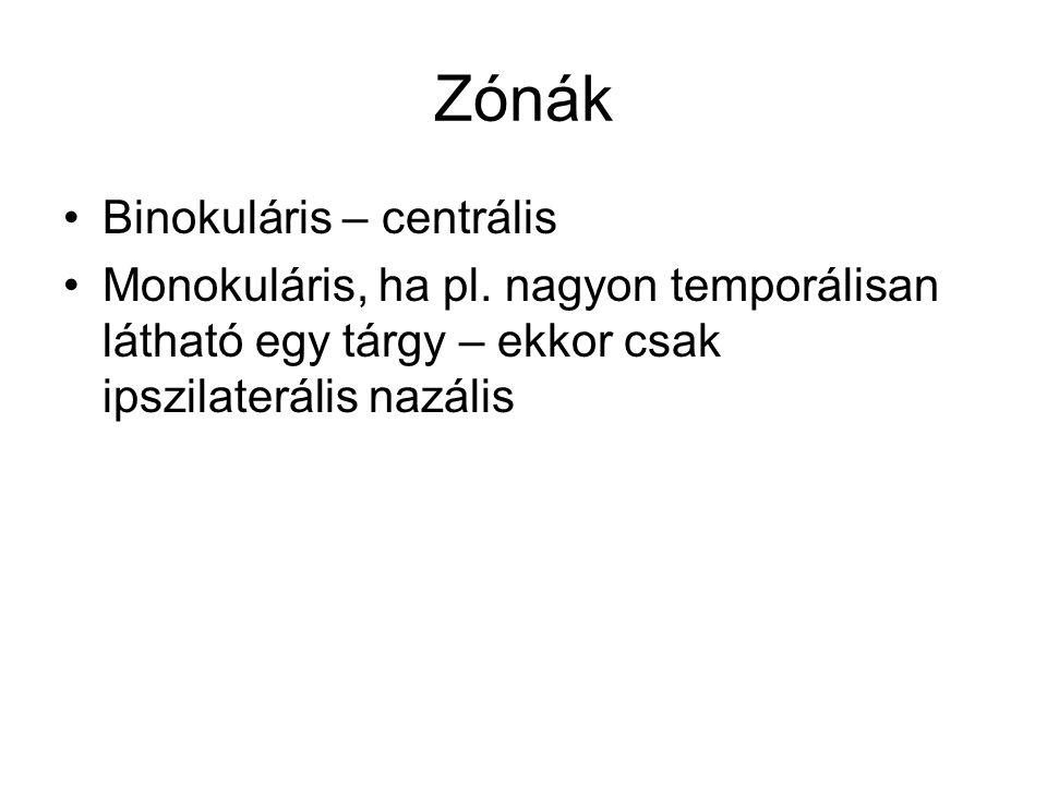 Zónák Binokuláris – centrális