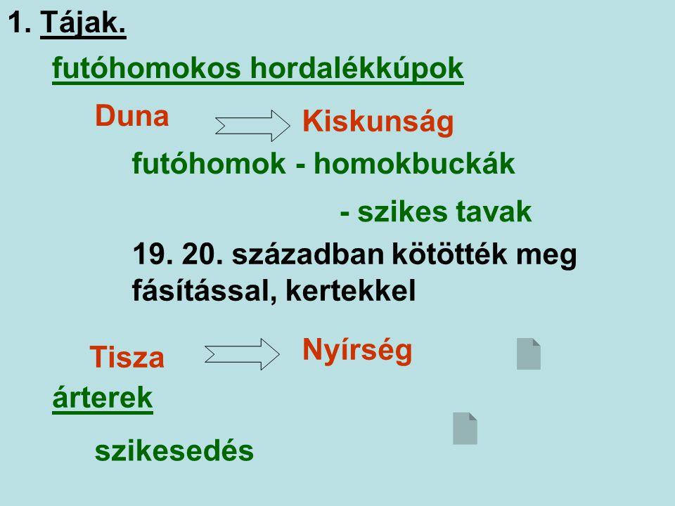 1. Tájak. futóhomokos hordalékkúpok. Duna. Kiskunság. futóhomok - homokbuckák. - szikes tavak.