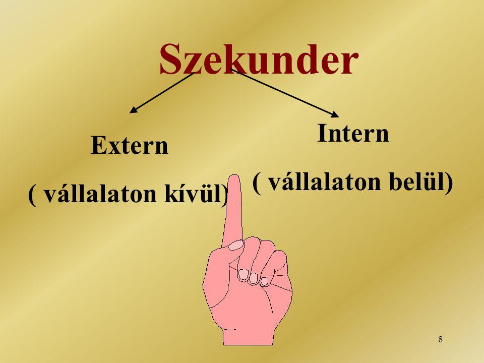 Szekunder Intern ( vállalaton belül) Extern ( vállalaton kívül)