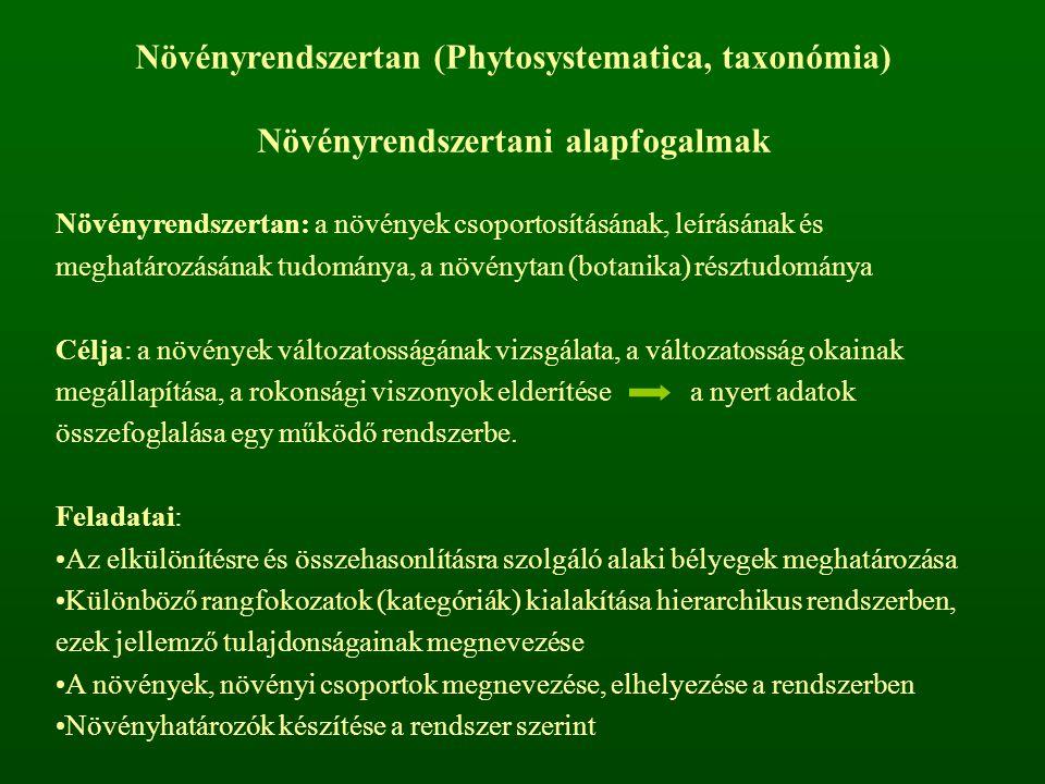 Növényrendszertan (Phytosystematica, taxonómia)