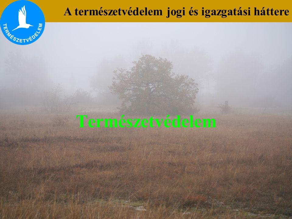 A természetvédelem jogi és igazgatási háttere