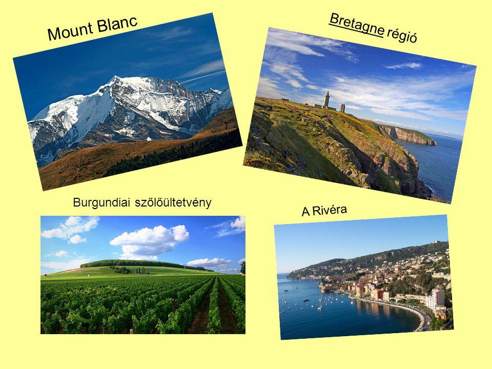 Mount Blanc Bretagne régió Burgundiai szőlőültetvény A Rivéra