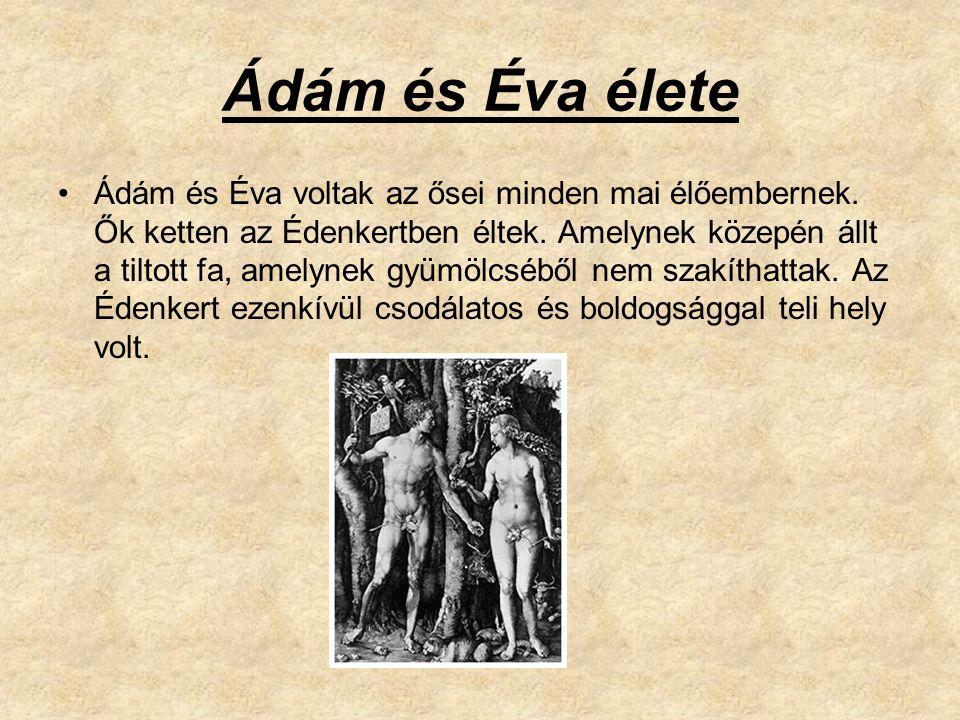 Ádám és Éva élete