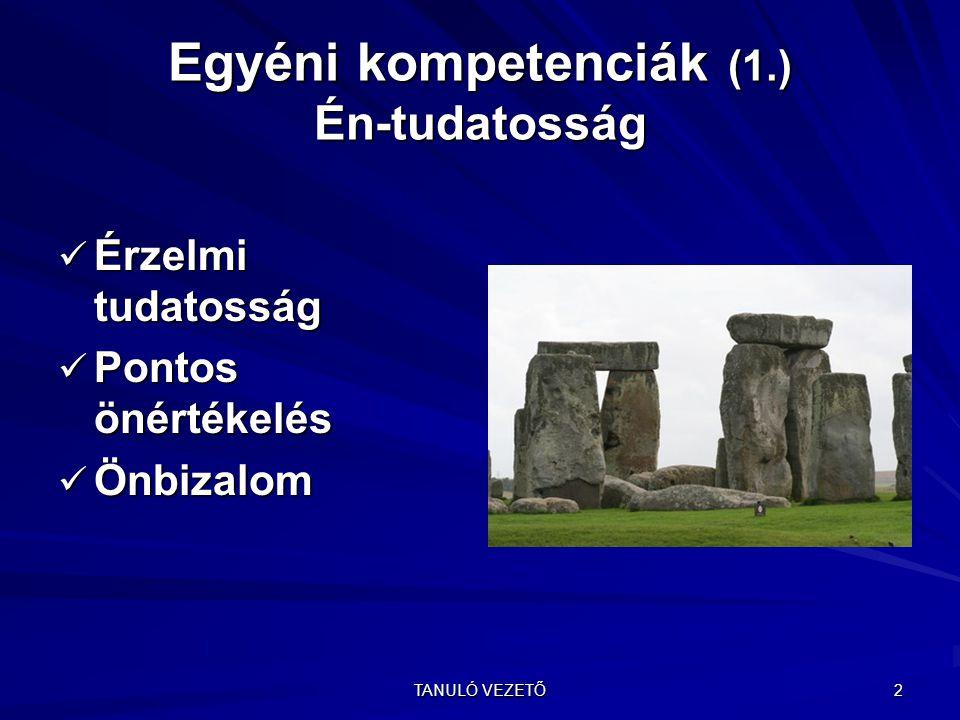 Egyéni kompetenciák (1.) Én-tudatosság