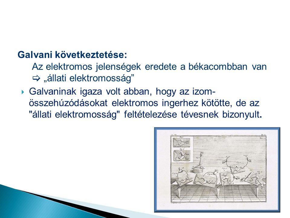 Galvani következtetése:
